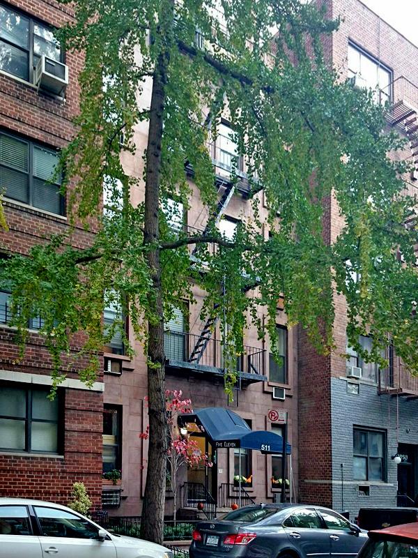 511 East 82nd Street