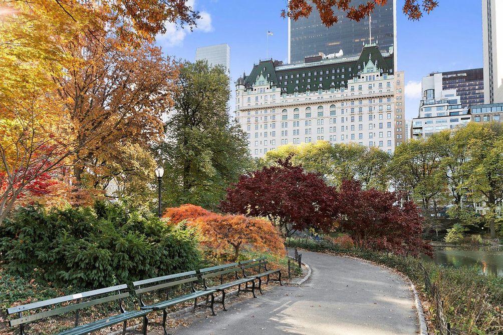 The Plaza hotel new york city