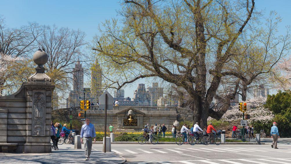 Central-Park-04