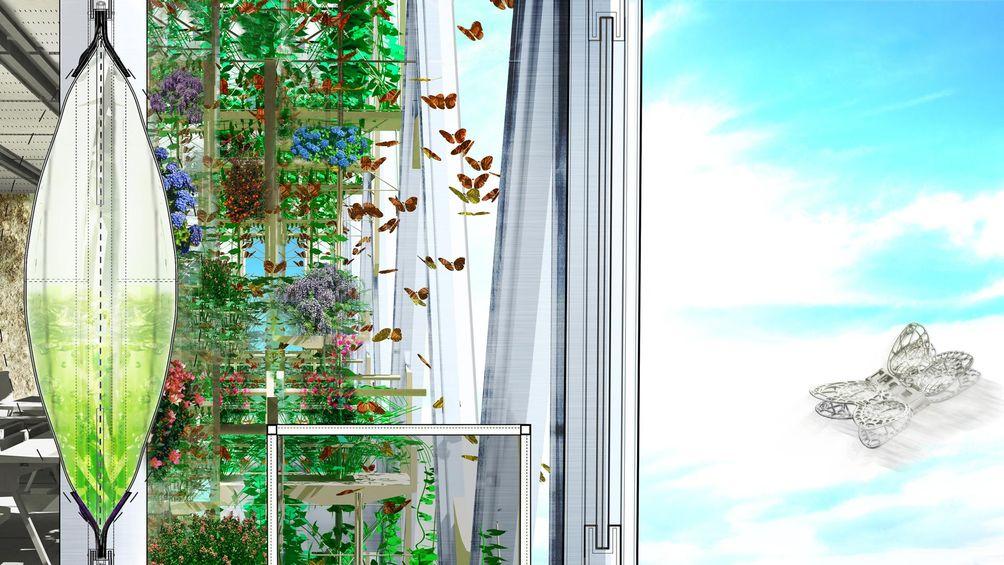 Monarch-Sanctuary-01