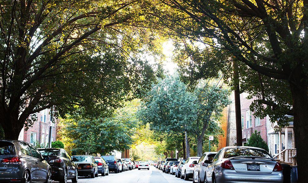 A residential street in Astoria, Queens