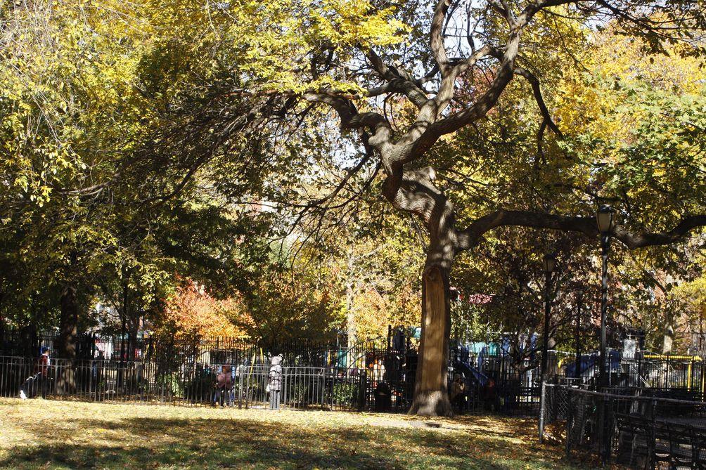 Tompkins-Square-Park-01