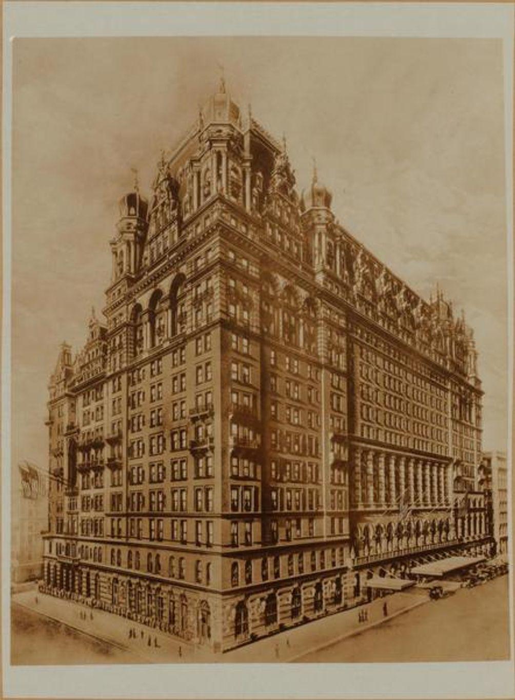 Waldorf-Astoria Hotel, Brown Brothers, NYPL
