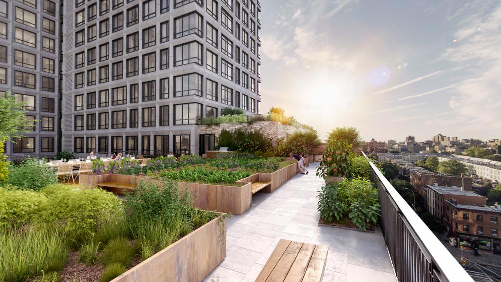 550-vanderbilt-avenue-garden