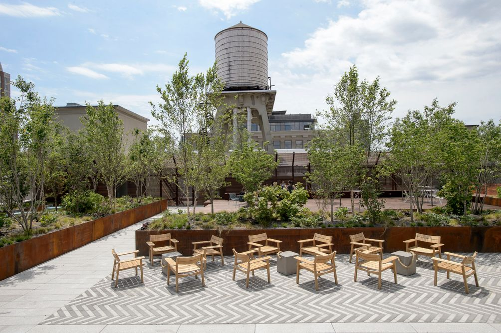 Two Trees Taps High Line Park Designer To Bring Lush Roof Decks To