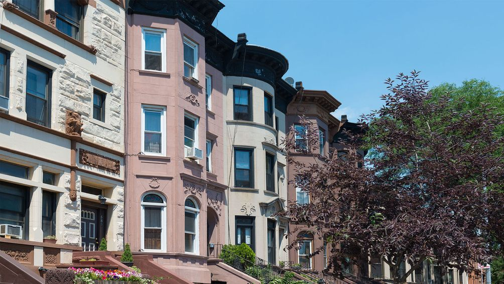 Bedford Stuyvesant Apartments And Neighborhood Info