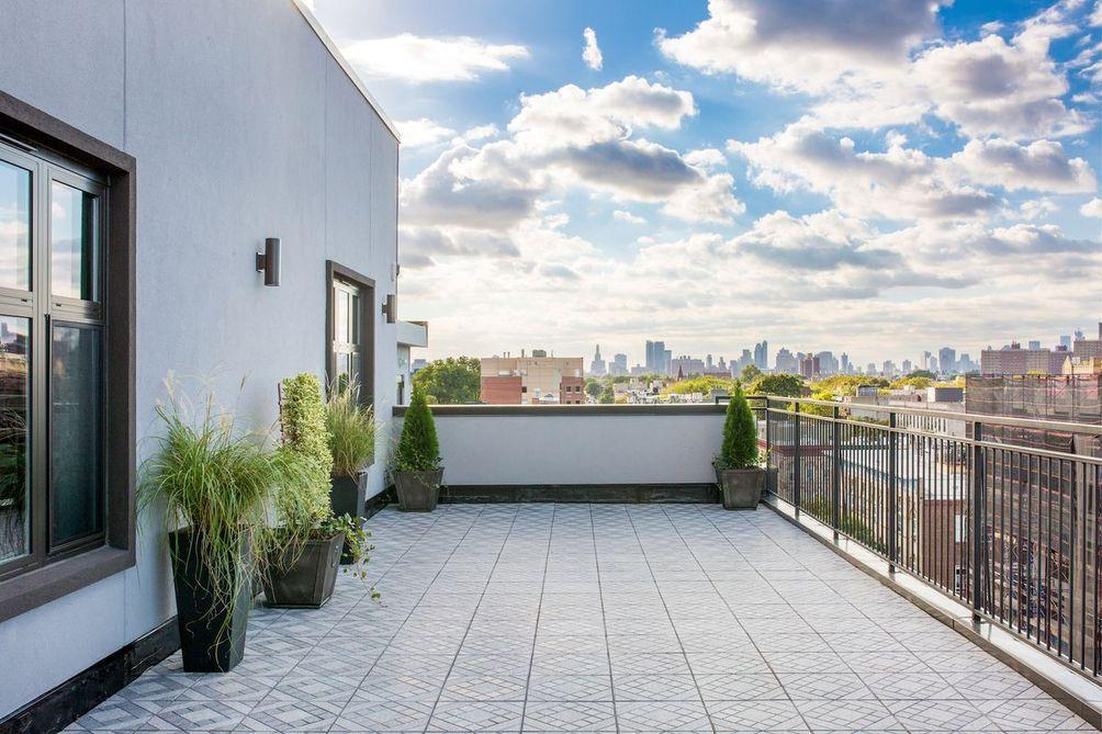 818 lexington avenue, bedstuy rentals, bold new york, no fee rentals, free rent, brooklyn rentals