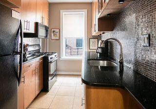 446 Kingston Avenue interiors