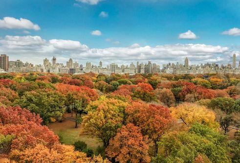 Central Park West co-ops