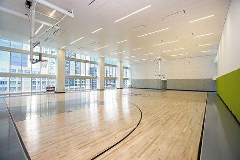 Hayden's full-sized basketball court