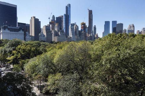 834 fifth avenue views