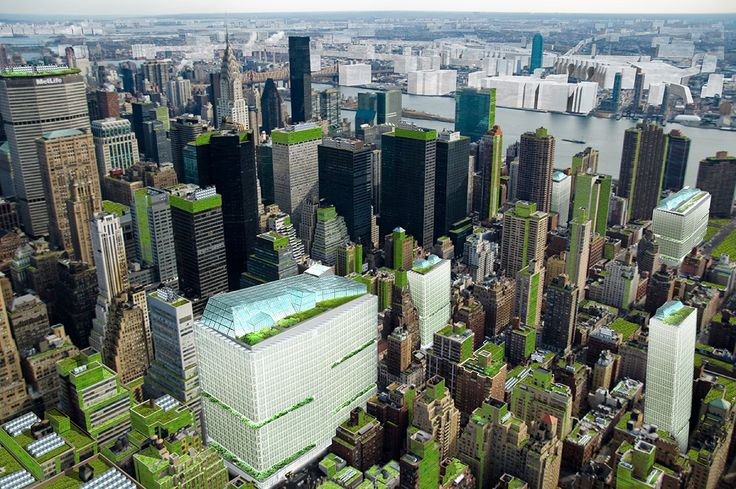 Vertical farms in mid-town Manhattan to produce food for up to 30,000 people? Renderings credit of Terreform led by Michael Sorkin https://www.terreform.info/nycss
