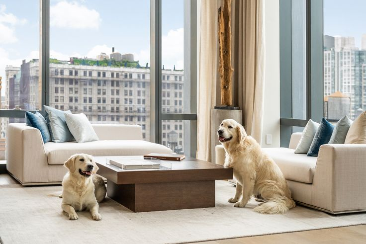New York real estate is going to the dogs in the best possible way. (277 Fifth Avenue via Kenneth Chen)