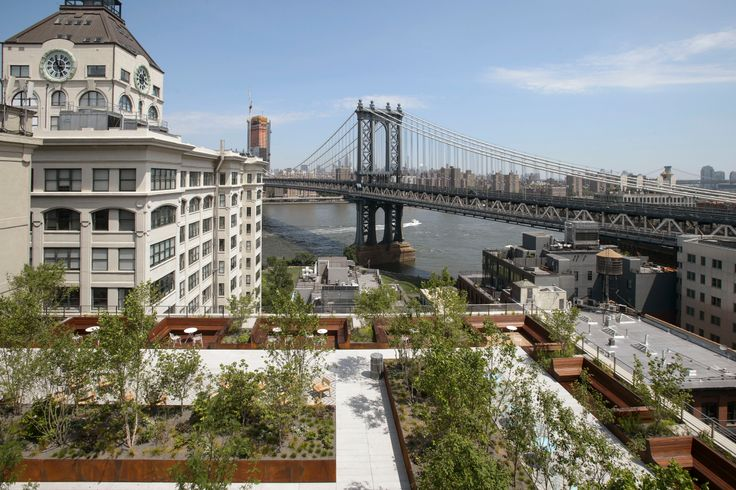 45 Main Street rooftop with views of the East River and Manhattan Bridge (Credit: Two Trees Management / Field Operations)