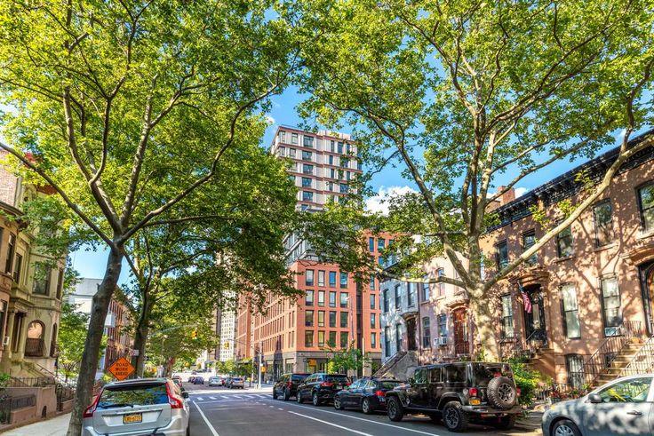 535 Carlton Avenue in Prospect Heights, Brooklyn (Image: 535carlton.com)