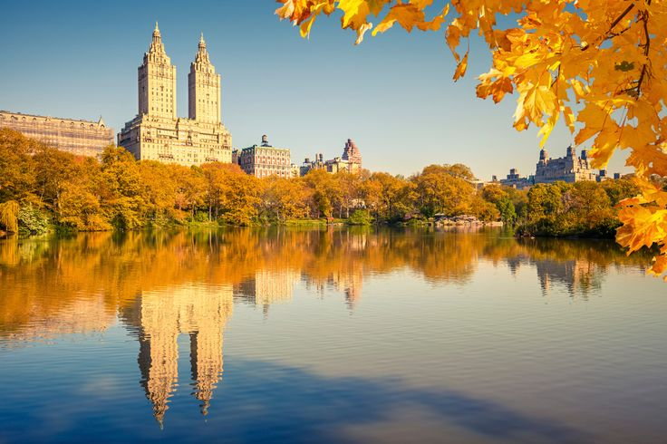 Why take a leaf tour when we have Central Park? (Stock photo)