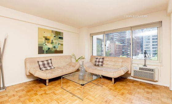 Turtle Bay House, 249 East 48th Street, #9A