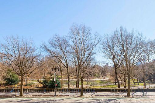 The Majestic, 115 Central Park West, #3D
