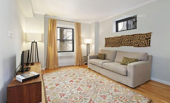 The Finch, 61 East 77th Street, #4D